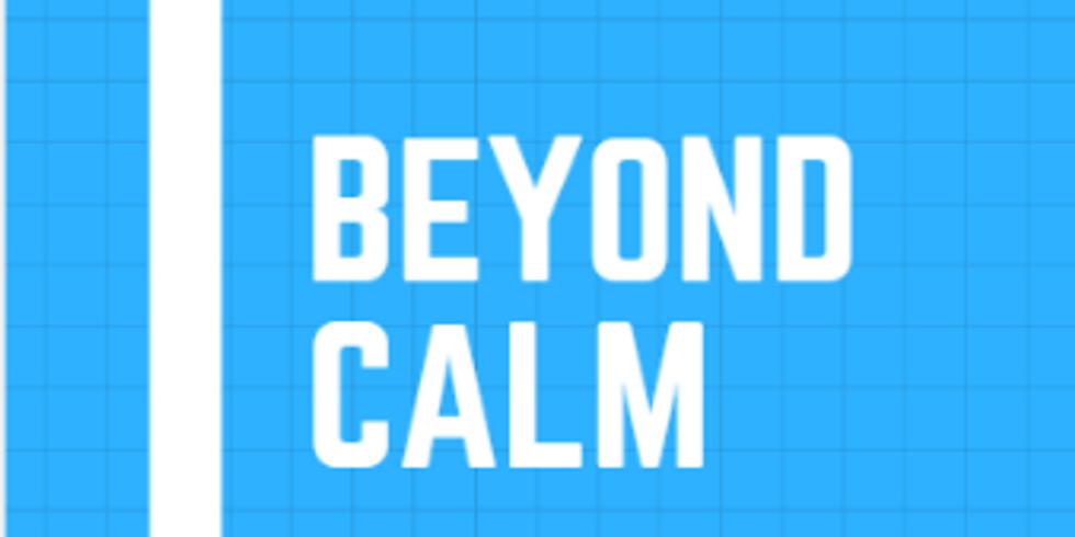 MBSR informed More than Mindfulness 8 week Class
