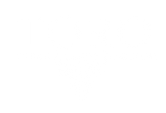 toroweb.png