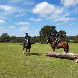 Top field with XC jumps available