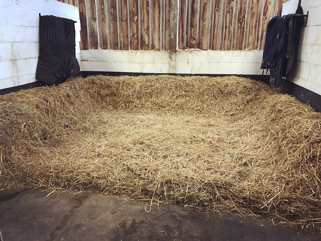 Straw Beds available