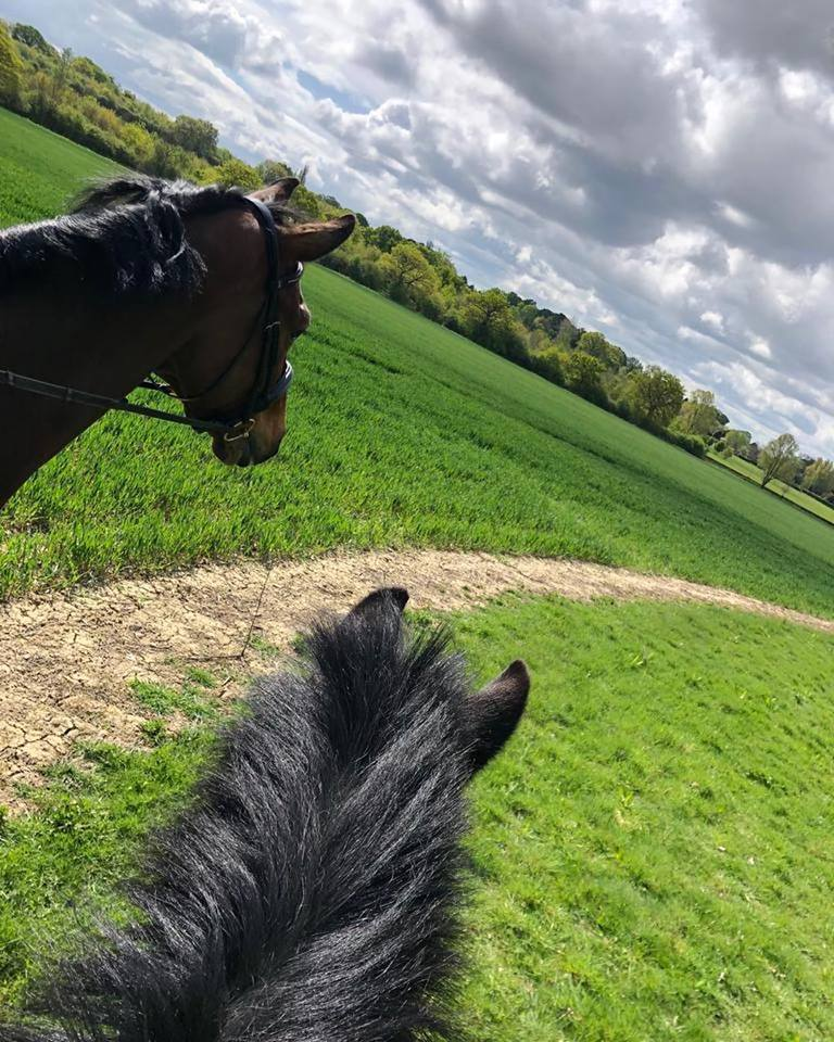 Off road hacking on local TROT ride