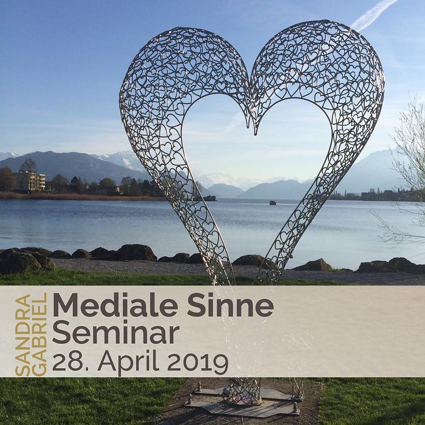 Mediale Sinne Seminar inkl. Zertifikat
