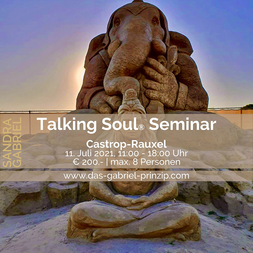 Talking Soul® Seminar