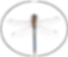 logo neu libelle only.png