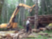 Dozer Deck Timber Sale 003_edited.jpg