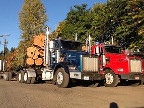 Log truck pics 003.JPG