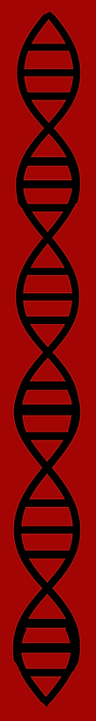 DNA red 2.png