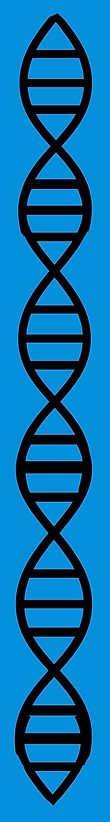 DNA blue 3.png