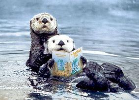 Otter reading books.jpg