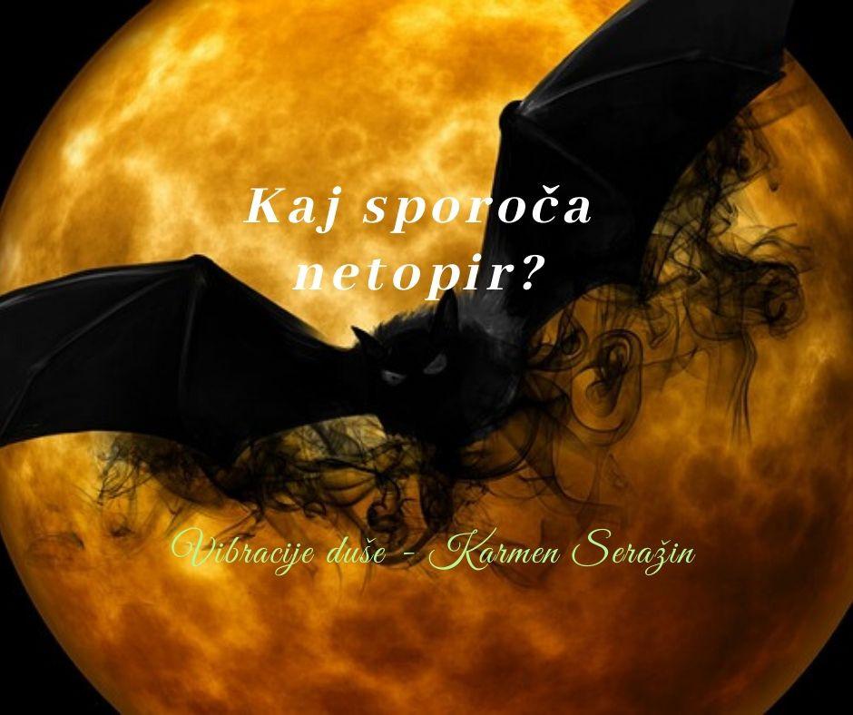 simbolika-duhovni-pomen-videnja-netopir/vibracijeduse.si