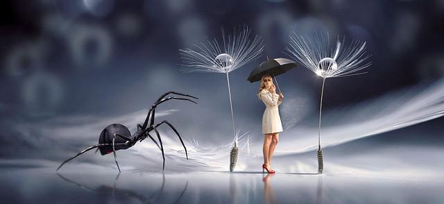 pajek-simbolika-pomen-videnja-živali-vibracijeduse.si