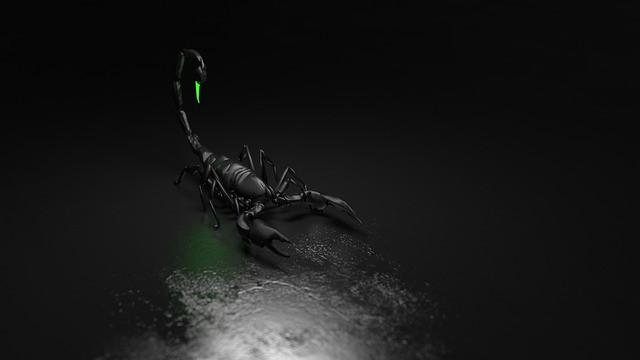 pomen-videnja-živali-škorpijon-vibracijeduse.si