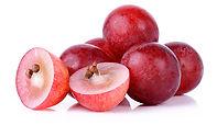 Grape Juice Polyphenols (Viniderm).jpg