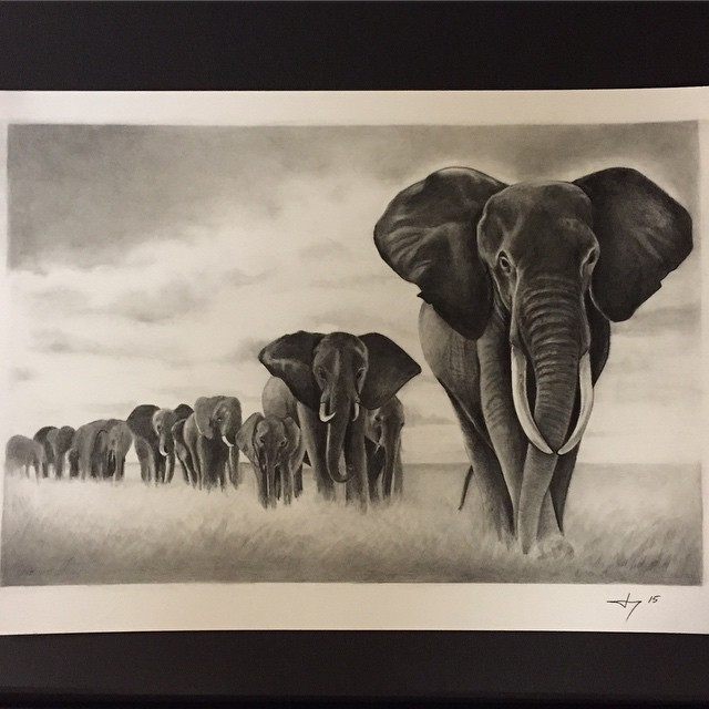 Instagram - For @dandann13 #pencildrawing#illustration#art#elephants#27thsttatto
