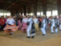 Grupo Danza entertains at THP