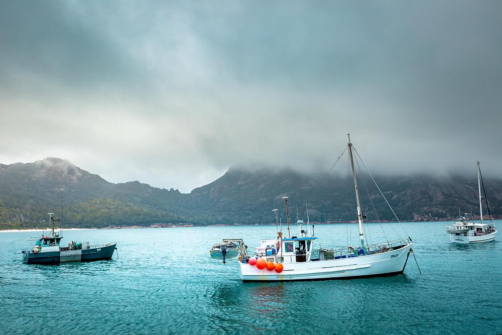 Wineglass Bay Fishing Boats