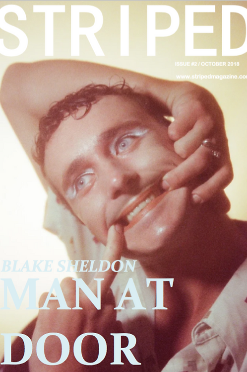 ISSUE 2 BLAKE SHELDON-'MAN AT DOOR'