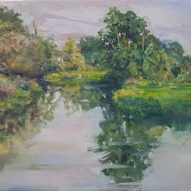 stephen kinder, river Wey, early autumn 1020.jpg