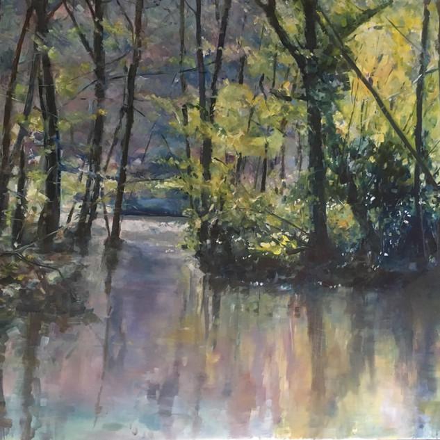 Winkworth Arboretum reflection 2, oil painting 80x