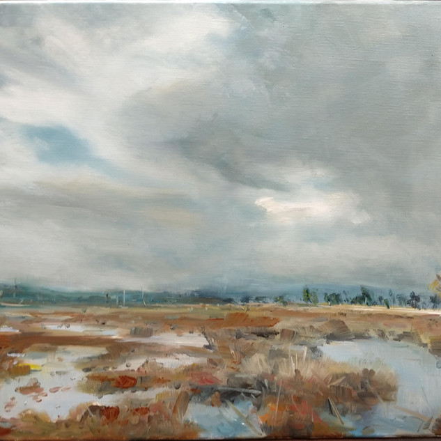 Thursley Common Vista, oil on canvas
