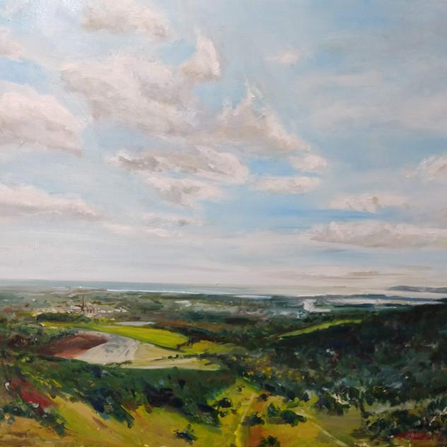 kingley vale, oil on canvas
