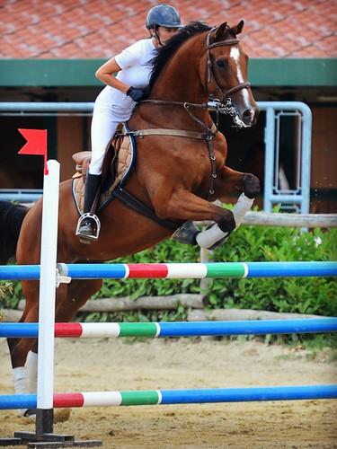 Equitation Agerbol 10.JPG
