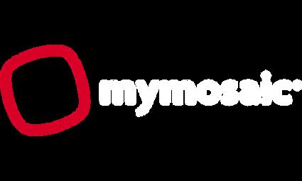 MyMosaic (1).png