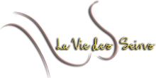 logo laviedeseins.png
