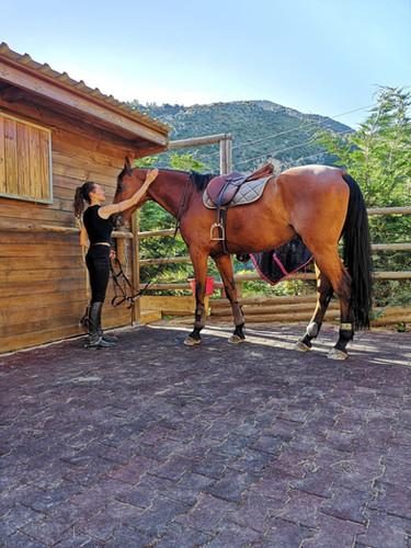 Equitation Agerbol 9.JPG