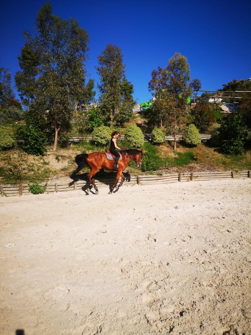 Equitation Agerbol 1.JPG