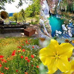 cameraRollTempImage 2.jpg