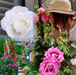 RTO_flowers.jpg