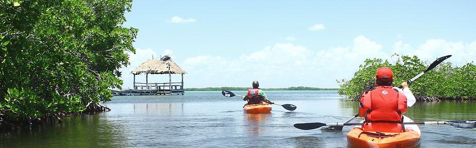 Main_OrquideasSianKaan_QuintanaRoo.jpg