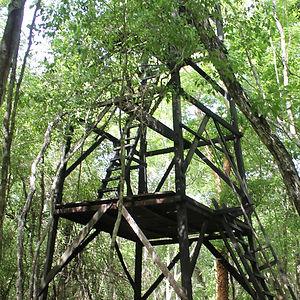 torre vigilancia campamento yaax che en campeche
