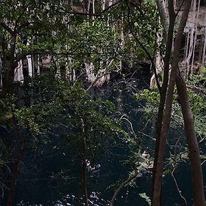 cenote en zaaz koolen haa yucatán