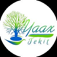 Logo_YaaxTekit.png
