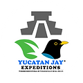 logo_yucatan_jay.png
