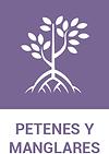 petenes_manglares.png