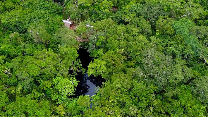 Cenote Xooch 4.jpg