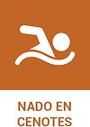 nado_cenotes.png