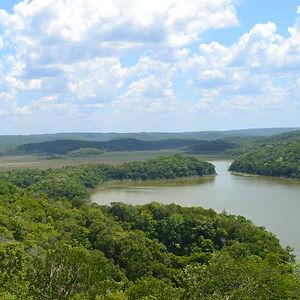 selva y río en los reyecitos campeche