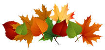 collocution-clipart-leaf.png
