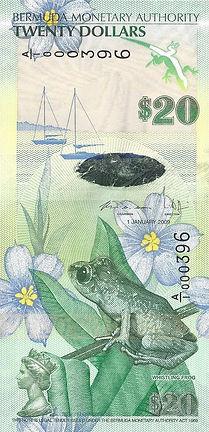 Bermudes 20BMD A1000396 R.jpg