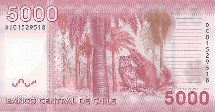 Chili 5000CLP 2013 DC01529518 V.jpg