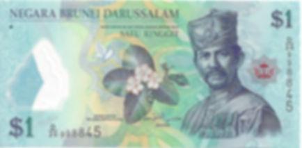 Brunei 1$ 2011 D20 998845 R.jpg