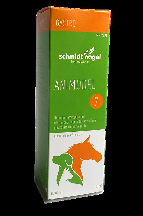 Animodel 7 – Gastro