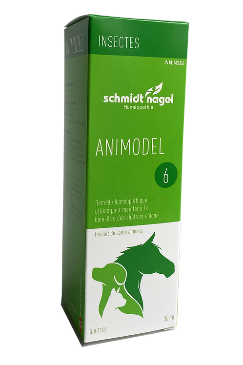 Animodel 6 – Insectes