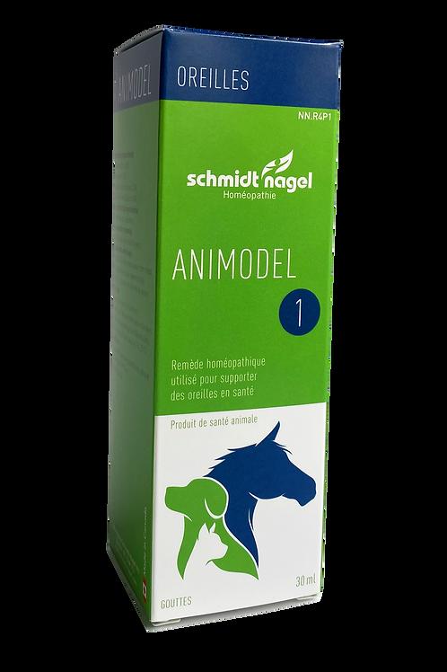 Animodel 1 – Oreilles