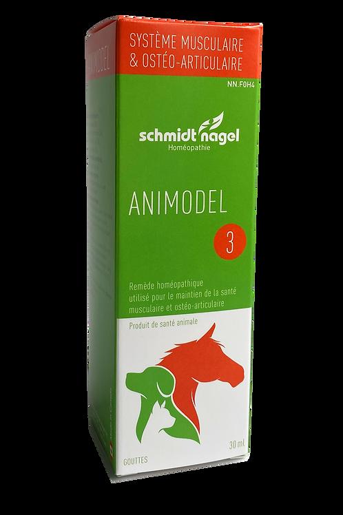 Animodel 3 – Système musculaire et ostéoarticulaire