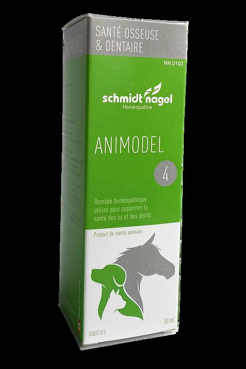 Animodel 4 – Santé osseuse et dentaire